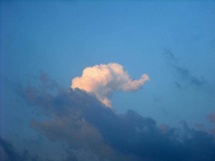 elephant-in-cloud